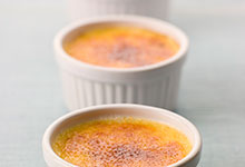 Vanilla Caramel Chocolate Custard or Creme Brulee